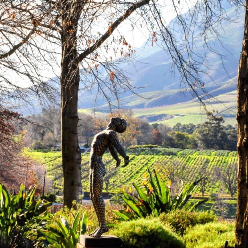 Winter Whites – Discovering South Africa's White Wines