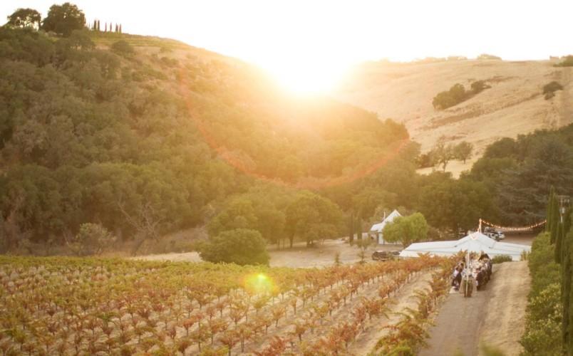 Seven Oxen Estate Wines