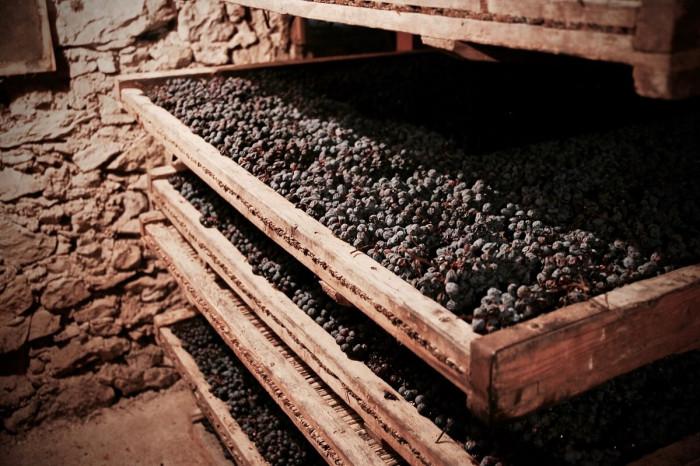 Valpolicella Dried Grapes Ripasso Amarone