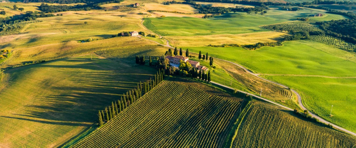 Italian Wine Tour – Six Wines From Italy's Most Iconic Producers