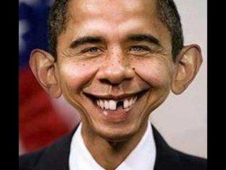 Obama Boy