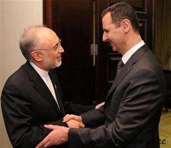 Salehi Bashar