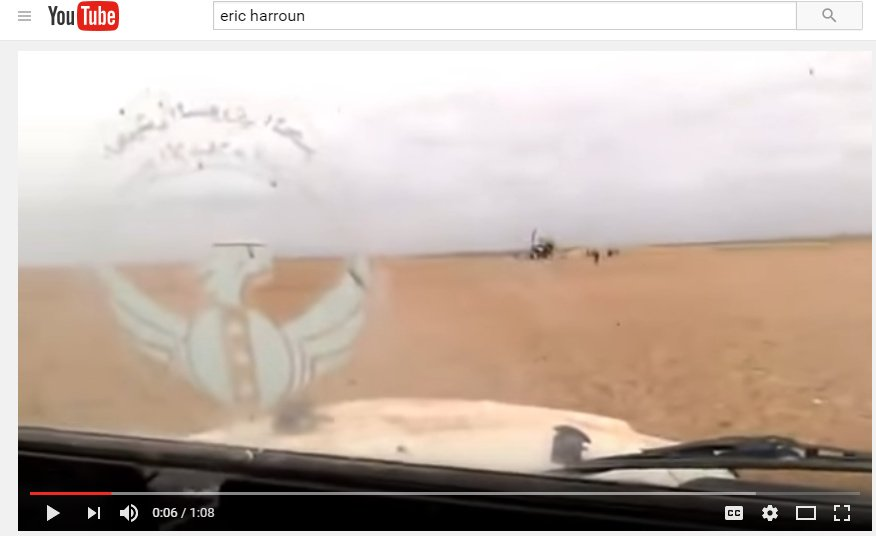fsa insignia on jeep window