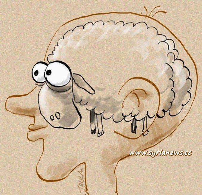 image-Sheeple