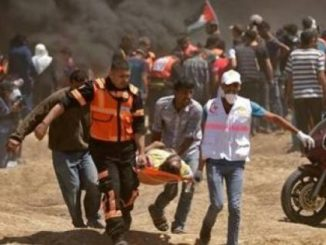 image-Gaza Massacre-Palestinian Medical Staff Evacuating a Civilian Shot by a Fighter from the IDF Terrorist Organization