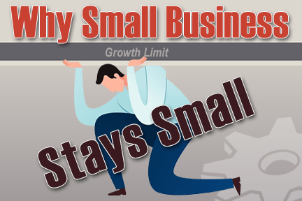 Why Small Business Stays Small