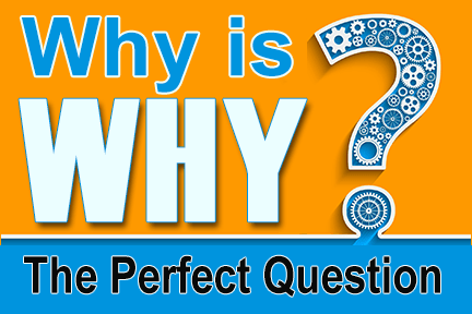 Why the perfect question