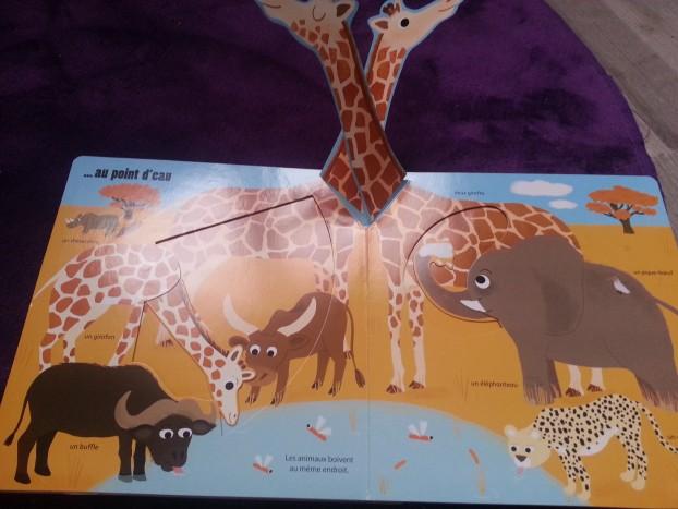 livres enfants box pandore