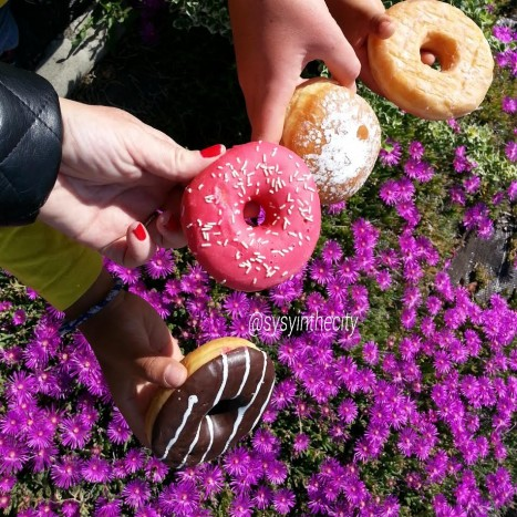 donuts couleurs