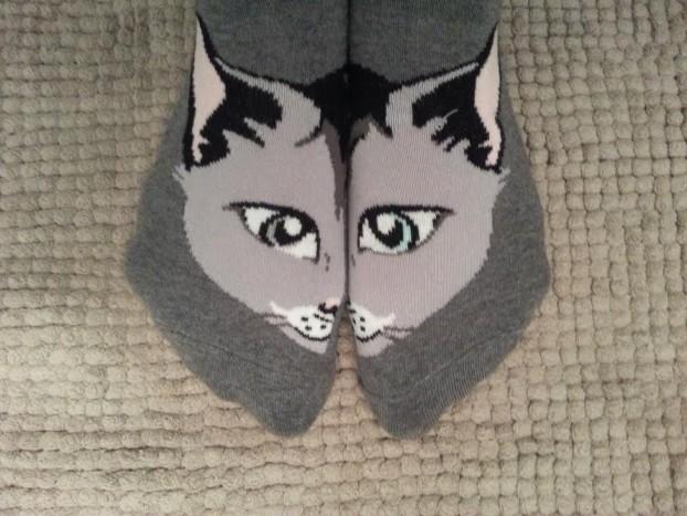 miaou chaussette
