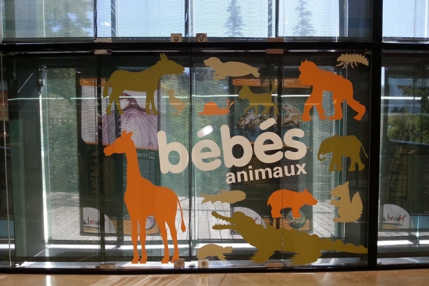 entree-expo-bebe-animaux