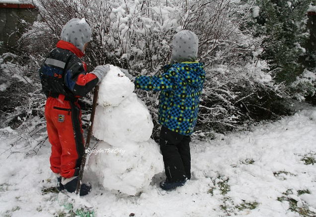 neige toulouse sysyinthecity 030215