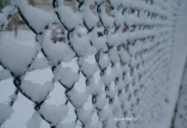 sysyinthecity toulouse neige 030215