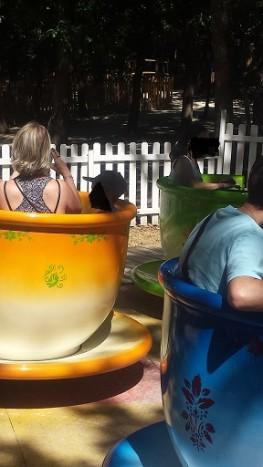 animaparc parc animalier toulouse sysyinthecity