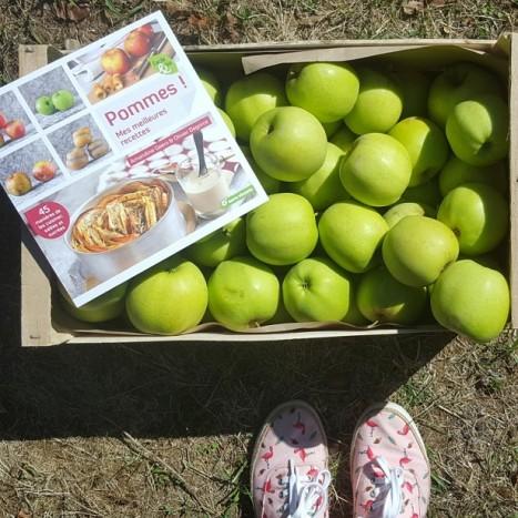 sysyinthecity-com-pommes-tarn-et-garonne
