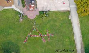 Red Ribbon Fly-Over 2015