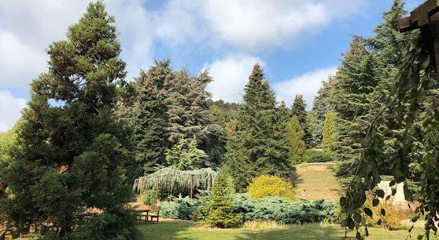 Folly Arborétum, Badacsonytomaj