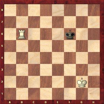 Wieża szachuje króla