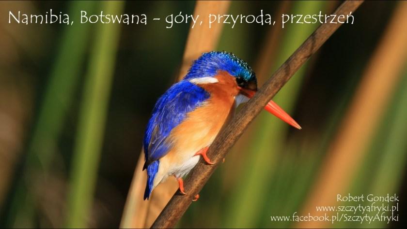 Pokaz zdjęć z Botswany i Namibii