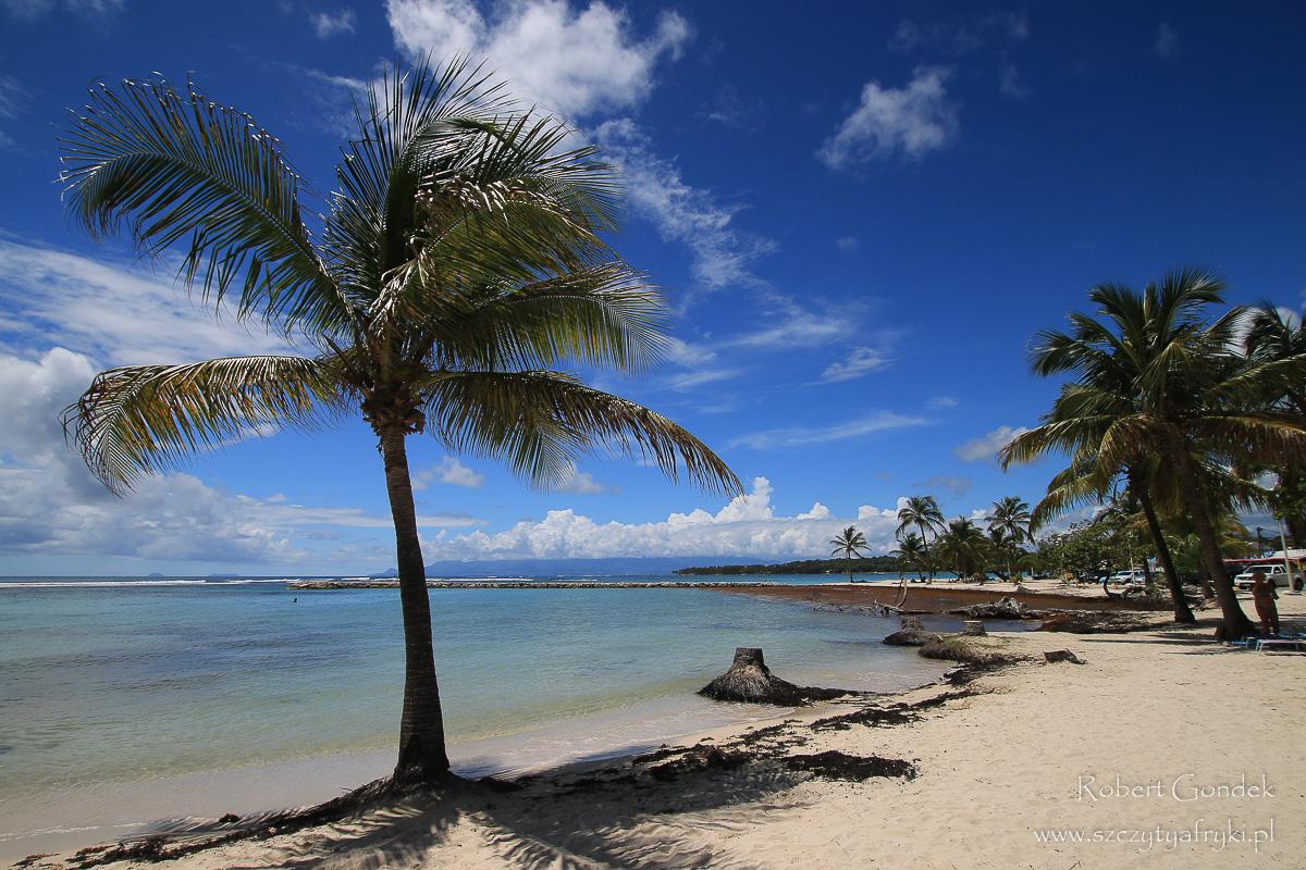 Karaiby - Dominika Gwadelupa - zdjęcia, relacja z podróży, informacje praktyczne