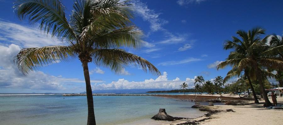 Karaiby - Dominika, Gwadelupa