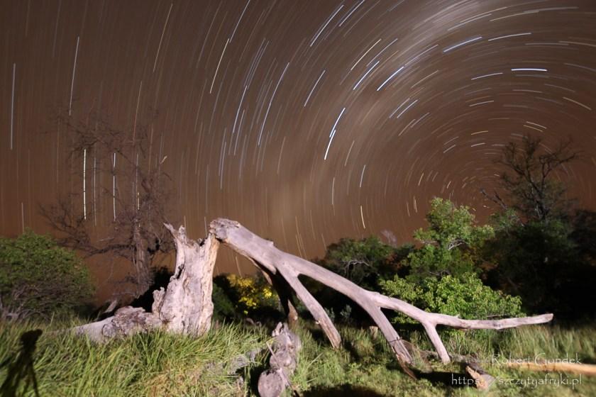 Nocne niebo w rezerwacie Moremi
