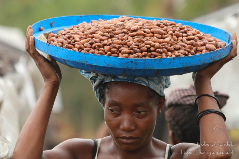 Na plantacji kakao na Wyspach Świętego Tomasza i Książęcej