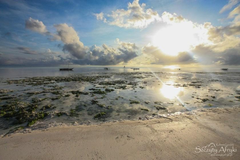 Planowanie podróży na Zanzibar - pytania