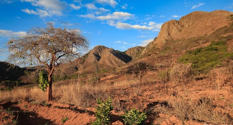 Próba zdobycia najwyższej góry w Zambii