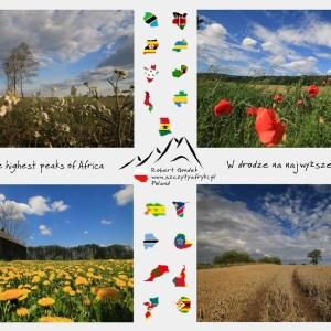 Zdjęcia z polskimi krajobrazami