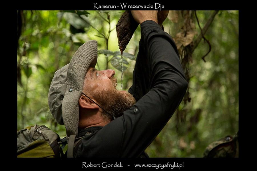 Robert Gondek w Kamerunie