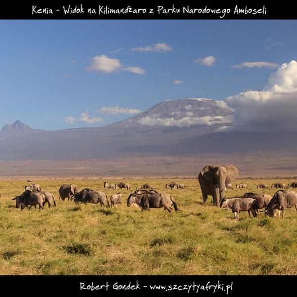 Zdjęcie Kilimandżaro w Parku Narodowym Amboseli