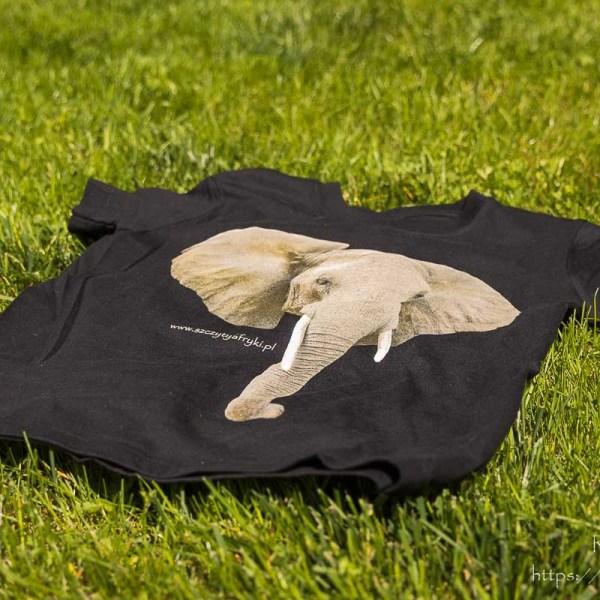 T-shirt słoń dzieci