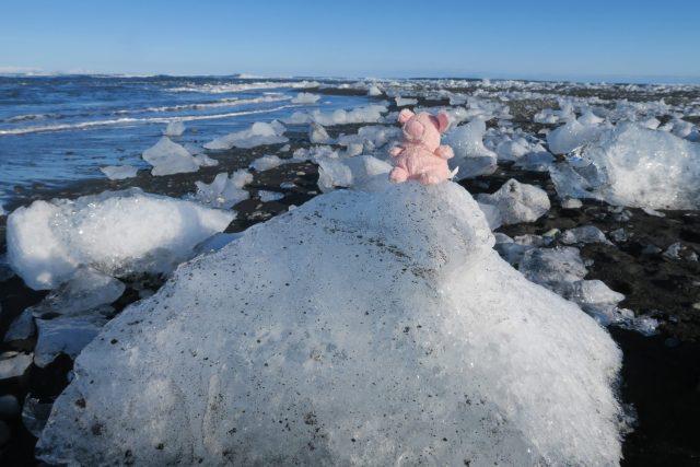 pinkles on glacier