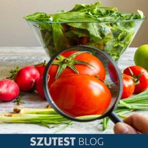 Tüketici Sağlığı ve ISO 22000 Gıda Güvenliği Yönetim Sisteminin Etkileşimi