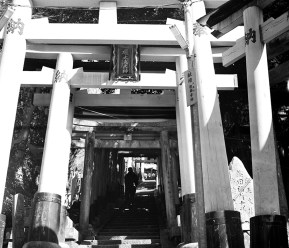 Fushimi Inari Taisha - Photo Takuma Shindo