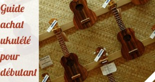 guide-achat-ukulele-debutant