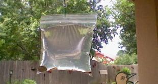 طرق التخلص من الذباب عن طريق اكاس النايلون