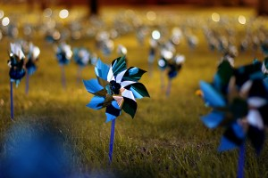 Field of pinwheels, symbol for Child abuse awareness