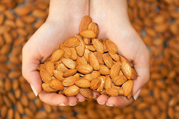 Eat Almond - Tabib.pk