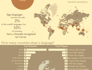 Tableau Infographic Dashboard Language Dashboards Bridget Cogley elegant design