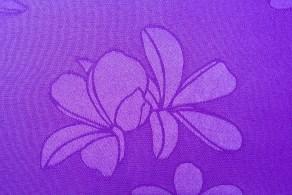 Cosmos Purple Texture