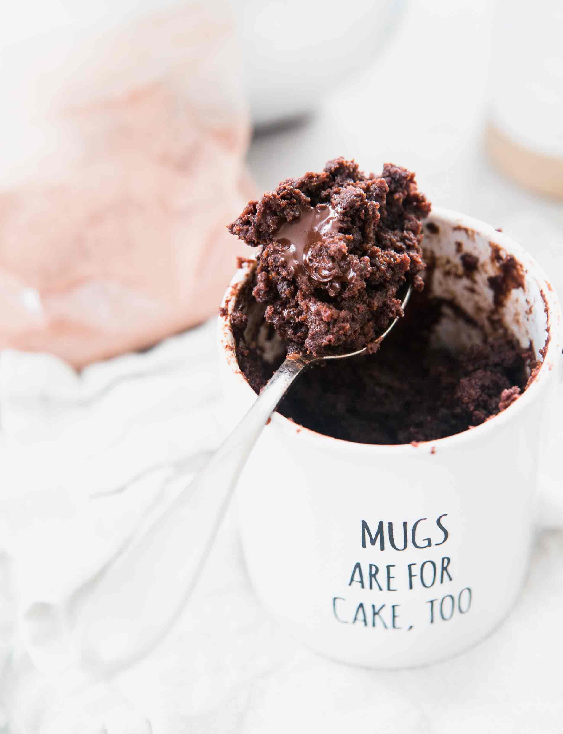 the moistest chocolate mug cake