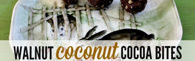 Walnut Coconut Cocoa Bites