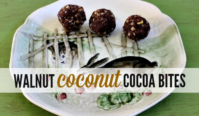 Delicious, PALEO walnut coconut cocoa bites are really tasty and healthy too!
