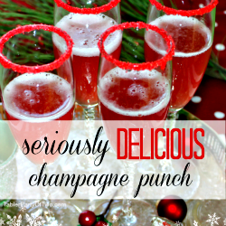 Seriously Delicious Champagne Punch small