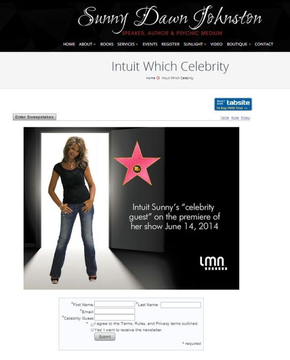 web embed on sunnydawnjohnston.com_intuit-which-celebrity