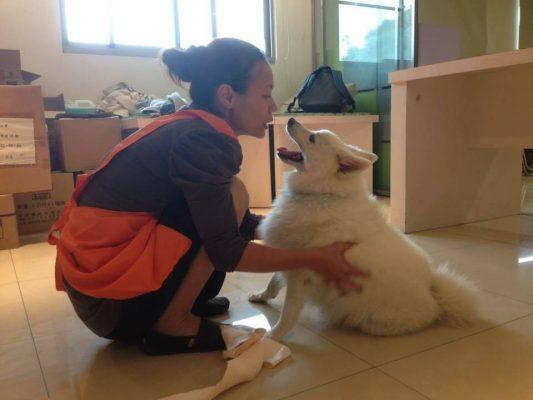 寵物溝通推薦、寵物溝通師、方卡楽(Color媽)