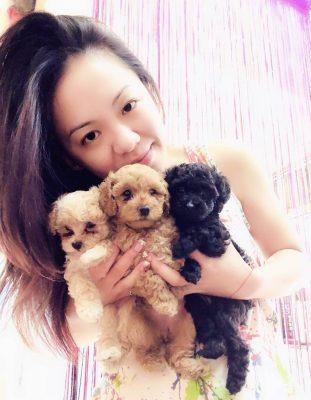 寵物溝通推薦、寵物溝通師、紫云(kami)