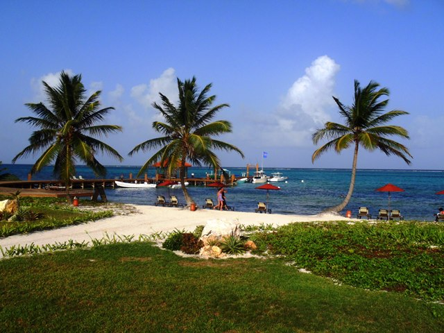 Resort Cam - taco cam - San Pero Lobster Festival - Belize Blog